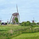 The Windmills of Kinderdijk by Lanis Rossi