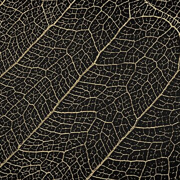Patterns of Nature - Leaf Veins in Gold on Black Canvas No. 4 by Captain7