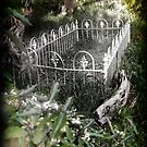 Unmarked Grave by dimarie