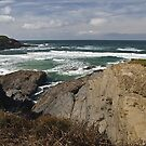Rugged coastline. by Steve plowman