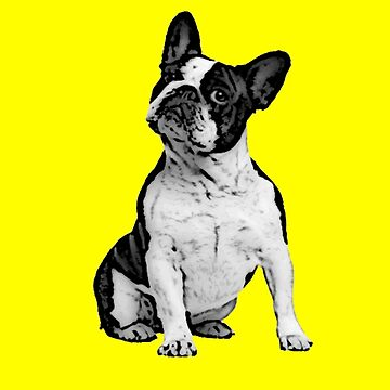 French Bulldog by theboonation