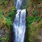 Multnomah Falls by Karen Ashenberner