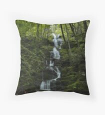 Buttermilk Falls - Tillman Ravine Throw Pillow