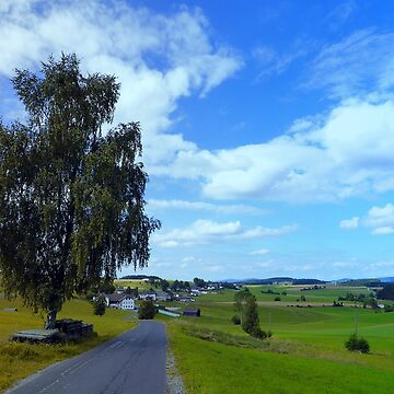 Old tree, country road and a cloudy sky | landscape photography by patrickjobst