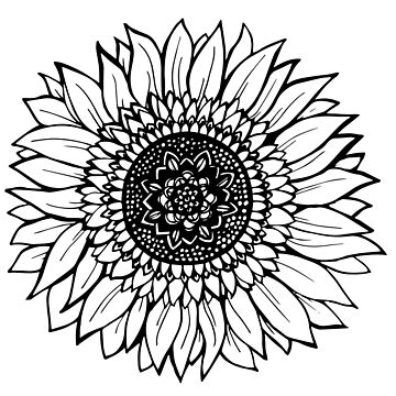 Sunflower Illustration by aterkaderk