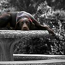 DOG DAYS by Lori Deiter