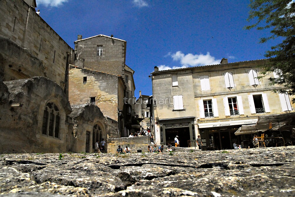 Ant's eye view of St Emilion by triciamary