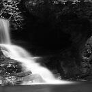 B&W of Catawba Falls by Forrest Tainio