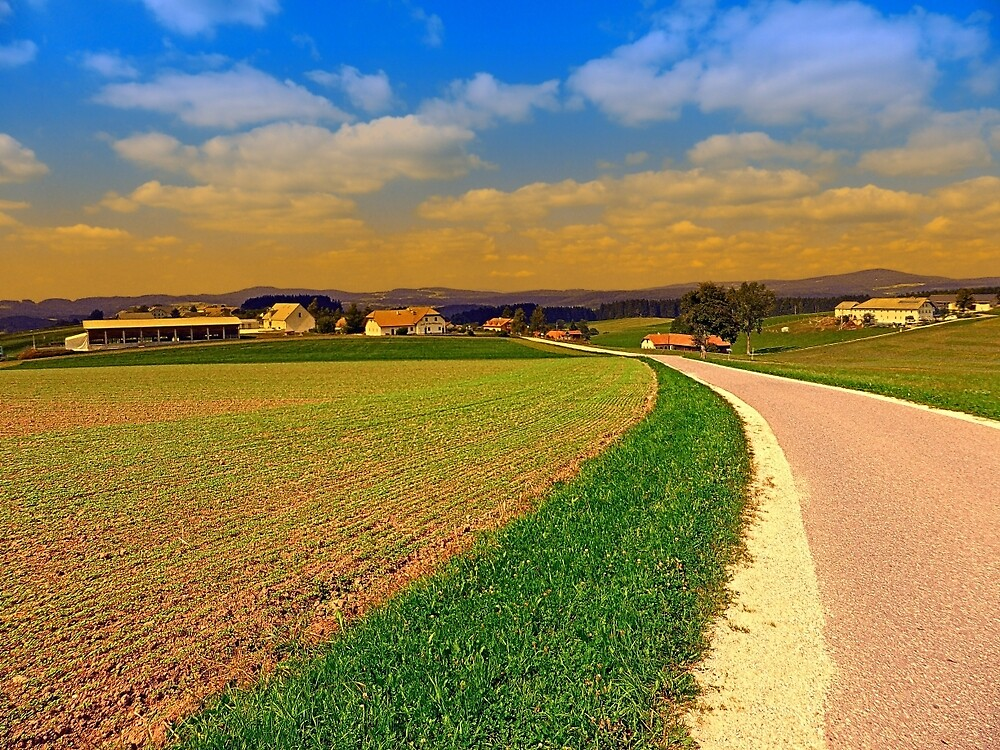 A road, a village and summer season II | landscape photography by Patrick Jobst
