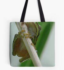 Froggin' around Tote Bag