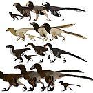 Dromaeosaur Families  by JedTaylor
