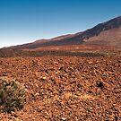 El Teide: Lava Flows by Kasia-D