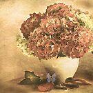 Vintage Hydrangea. by Irene  Burdell