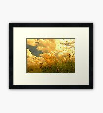 Far from the Maddening Crowd 1 Framed Print