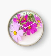 Cosmos in a Shell Clock