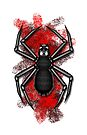 Errorface Skull Spider by errorface