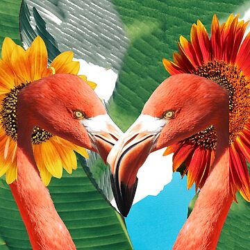 Flamingos on love search by HiddenSun-