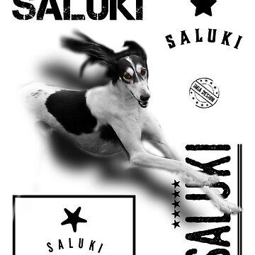 Particolour Saluki No 03 by iMia69
