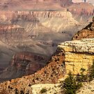 The Grand Canyon by Lisa Kenny