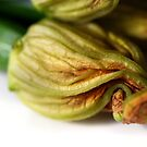 Zucchini Flower by caffeinepowered