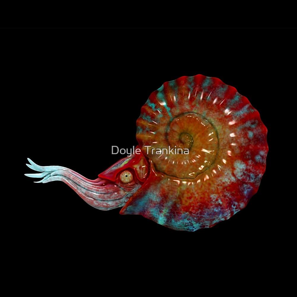 Ammonite (red)  by Doyle Trankina