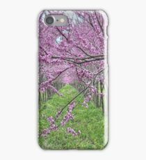 Redbud Grove iPhone Case/Skin