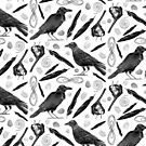 Corvid Collection Crow And Raven Print by Evvie Marin