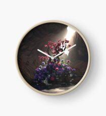 Biome Clock