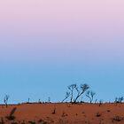 Desert Sunset by metriognome