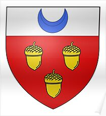 French France Coat of Arms 16403 Blason fr loche Poster