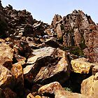 Boulder Scrambling on the Summit by Lexa Harpell