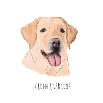 Golden Retriever by alicedaisymae3