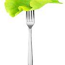 Lettuce leaf on a fork by 6hands
