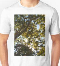 Tree, #Tree, Gambel oak, #Gambel, #oak, #GambelOak, Spiral, helix, scroll, loop, volute, spire, #Spiral, #helix, #scroll, #loop, #volute, #spire Unisex T-Shirt