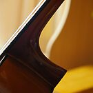 Can You Identify This Neck? by David McMahon