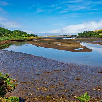 Newport Marshes by mlphoto