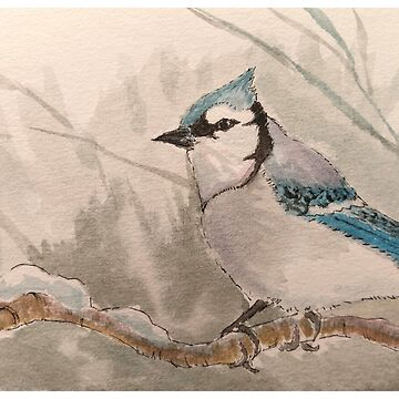 Blue Jay in Watercolor and Ink by PKIDAWMBT