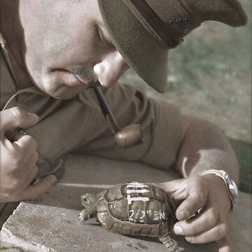 Captain David Michelson with Tim the tortoise, Palestine, 28 March 1930 by cassowaryprods
