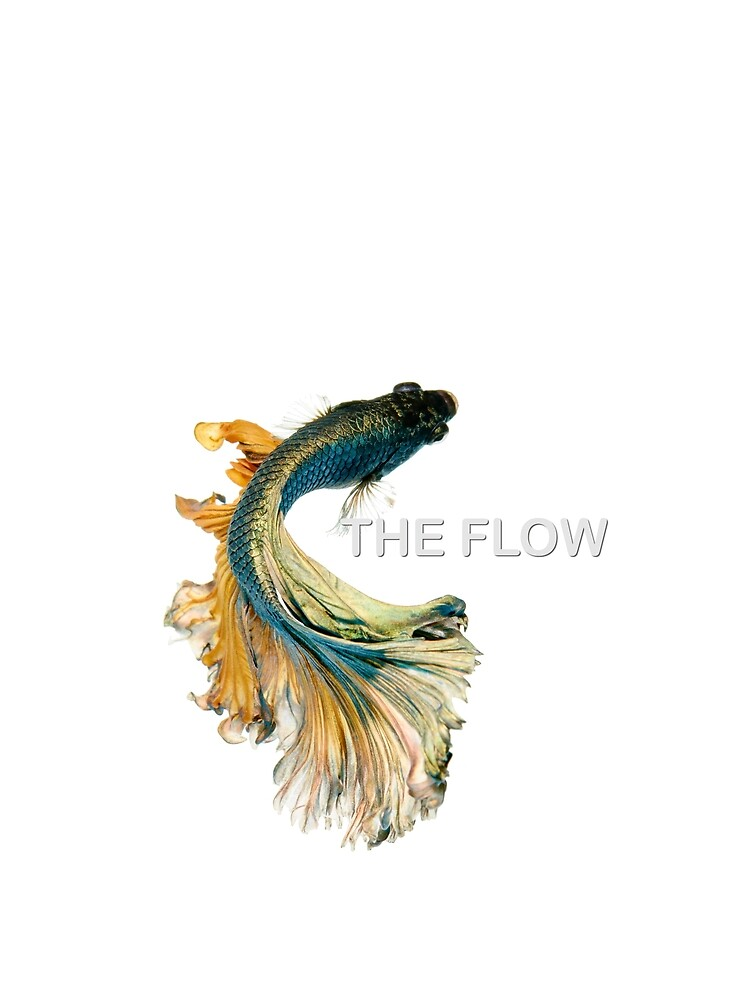 The Flow by Moutassem