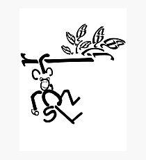 Swinging Monkey Photographic Print