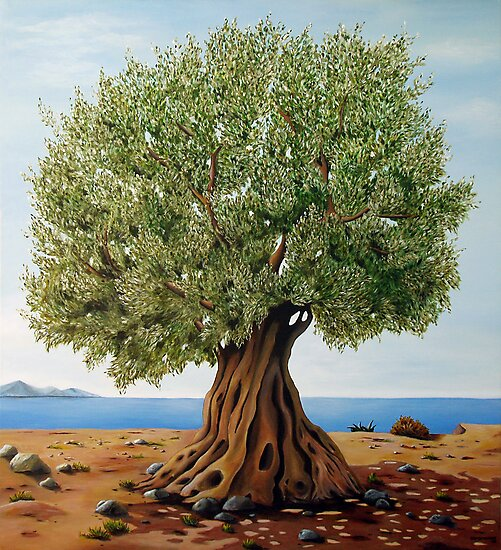 Olive Tree by Georgia Korogiannou