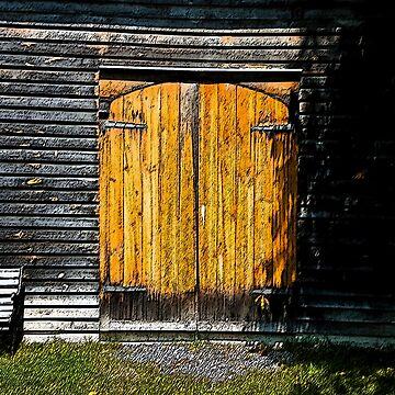 Barn Doors by DesignsByDebQ