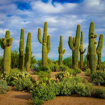 Cactus Array by gemlenz