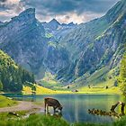 """A Beautiful Place Called """"Seealpsee"""" At  Switzerland by Susan Dost"""