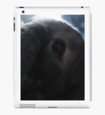 Moody Eye iPad Case/Skin