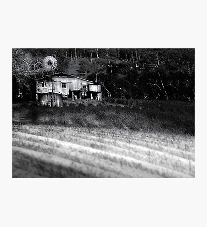 Living on the Land Photographic Print