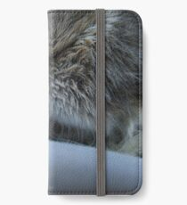 Button nose iPhone Wallet/Case/Skin