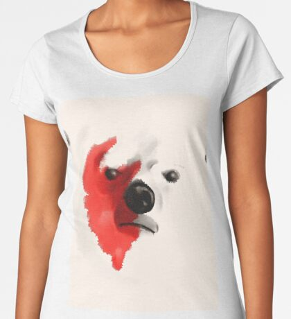 Safe? Premium Scoop T-Shirt