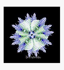 Virus Photographic Print
