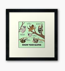 Know Your Sloths Framed Print